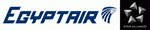 Logo icon for EGYPT AIR